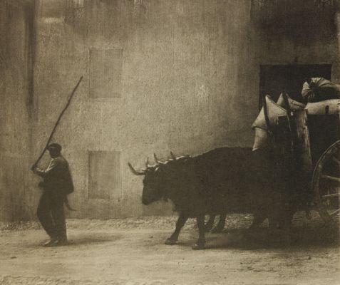 Bullock Cart, Segovia