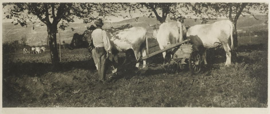 Lombardy Ploughing Team