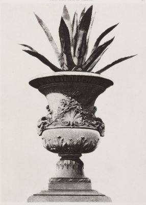 Jardin des Tuileries, Ext. 27
