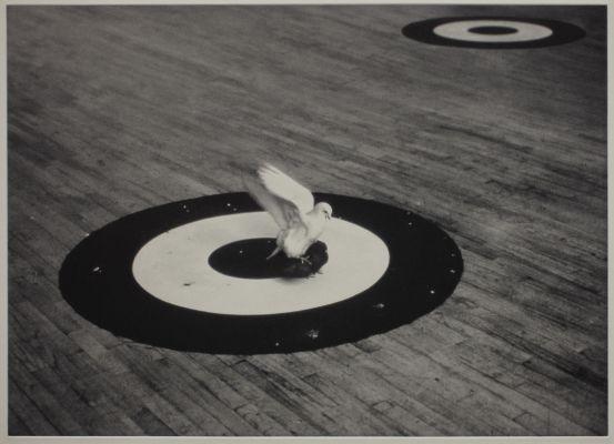 Plain Air, 1969