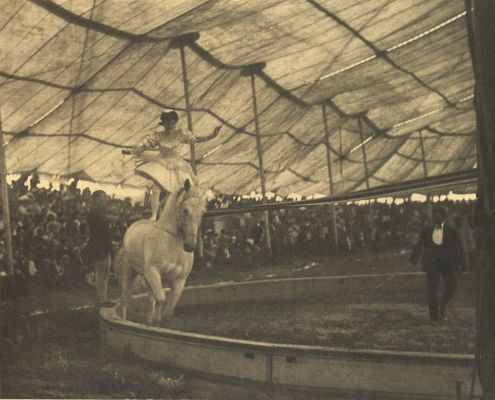 In the Circus