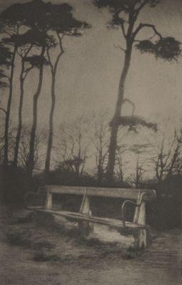 Saltram's Seat