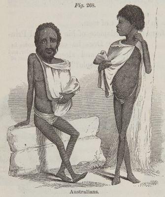 Fig. 268. Australians.