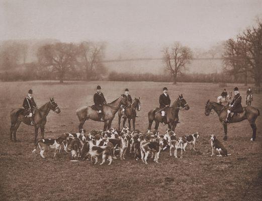 Earl Fitzwilliam's (Wentworth) Foxhounnds