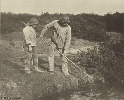 Eel-Picking in Suffolk Waters