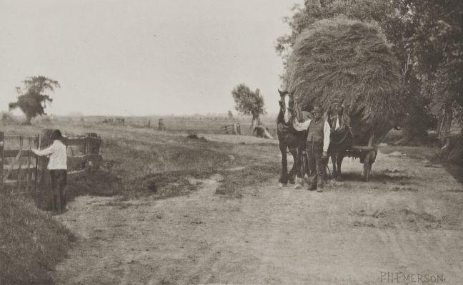 The Wealth of Marshland
