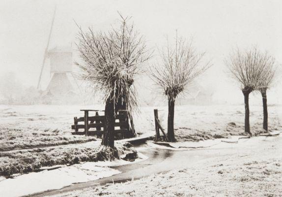 Mistige Winterdag
