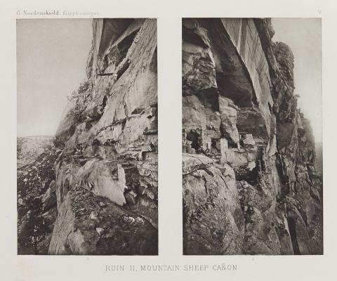 Mountain Sheep Canyon