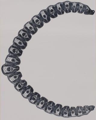 Panche XV Gynérium argenvenum (graminée)