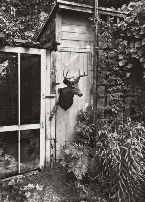 Deer Door