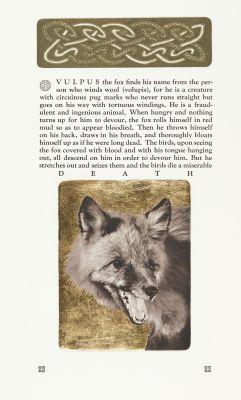 Vulpus the Red Fox
