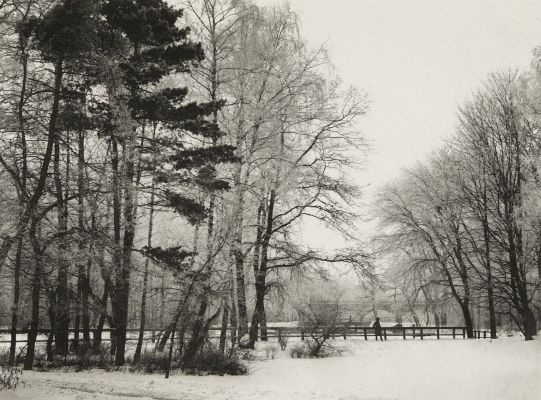 Im Rauhfrost