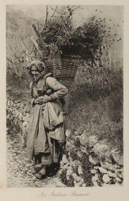 The Italian Peasant