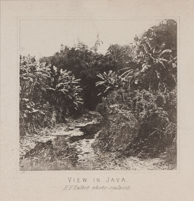 View in Java