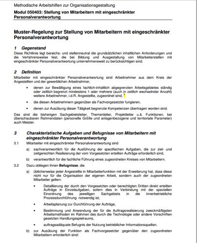 Erste Seite der Muster-Regelung zur Stellung von Mitarbeitern mit eingeschränkter Personalverantwortung.