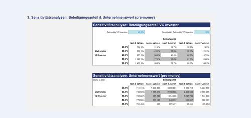Visualisierung des Unternehmenswertes und des Beteiligungsanteils
