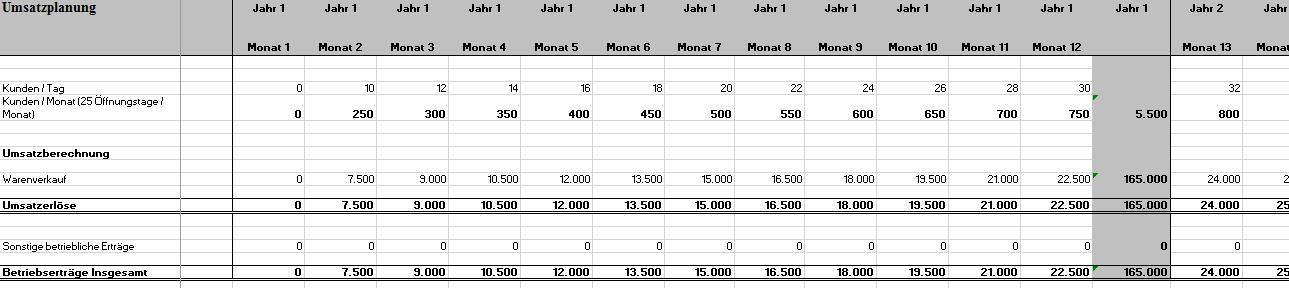 Hier erhalten Sie einen Einblick in die Excel-Datei
