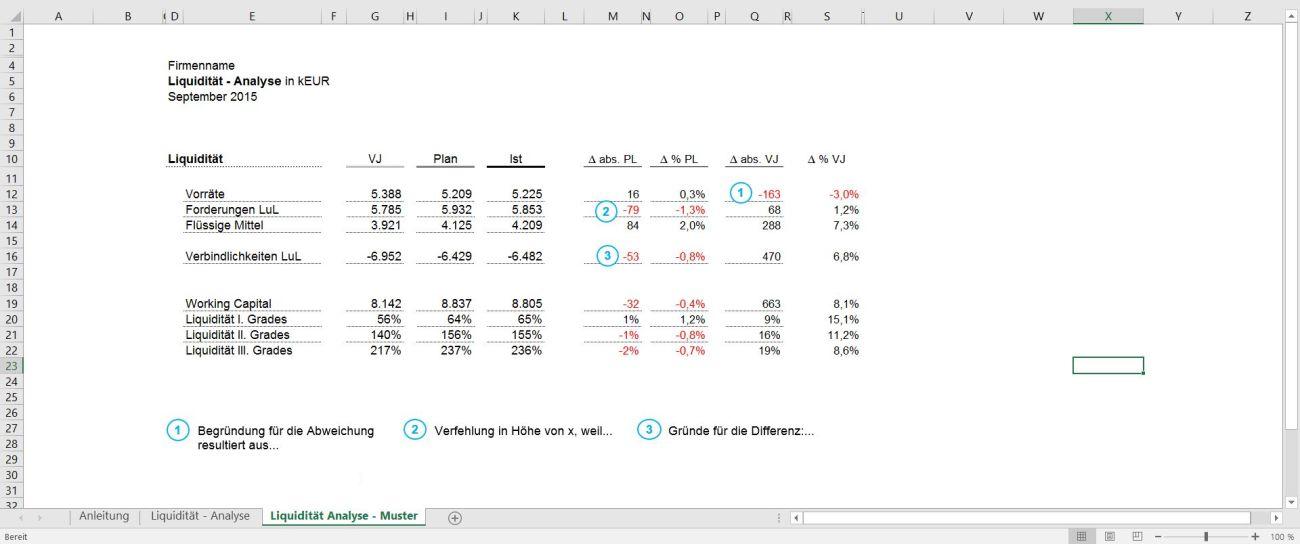 Liquiditäts Analyse Tool
