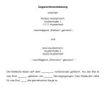 Auszug aus der Sorgerechtsvereinbarung (Informationspflicht).