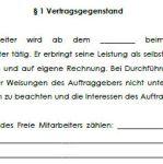 Vertragsgegenstand des Vertrags über freie Mitarbeit mit einem Unternehmensberater.
