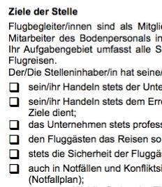 Stellenbeschreibung - Flugbegleiter/in