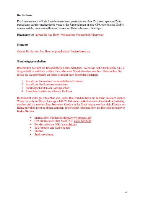 Businessplan - Bügelservice