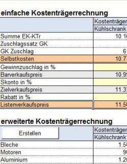 Professioneller RS-Kosten-Leistungsrechner in Excel