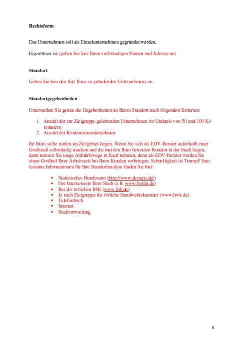 Businessplan - EDV-Berater
