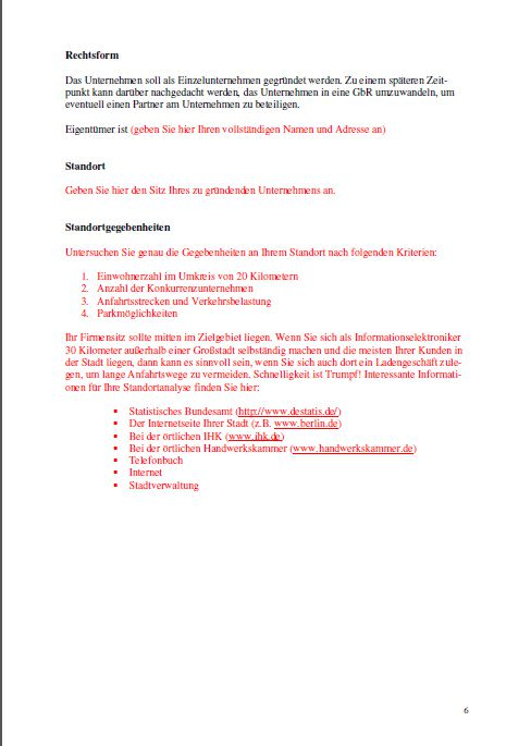 Businessplan - Informationselektroniker