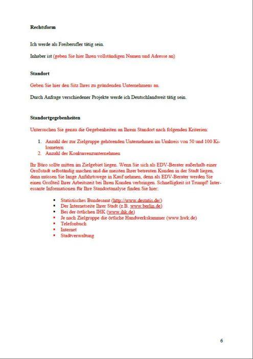 Businessplan - Netzwerkadministrator