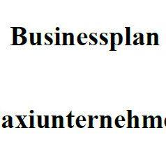 Businessplan - Taxiunternehmer