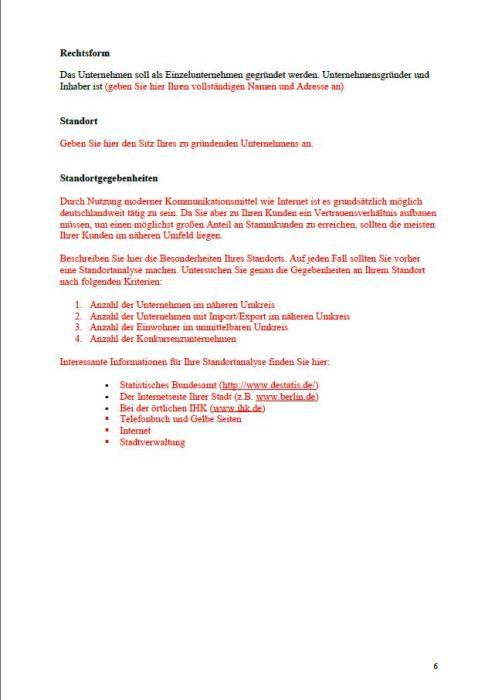 Businessplan - Übersetzer