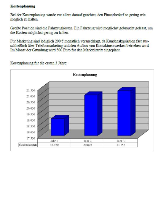 Businessplan - Fensterputzer
