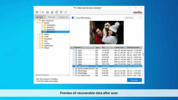 Stellar Information Technology Private Limited - Data Recovery Professional - Windows V10