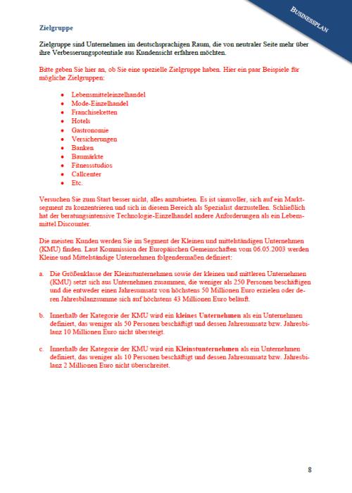 Businessplan - Testagentur