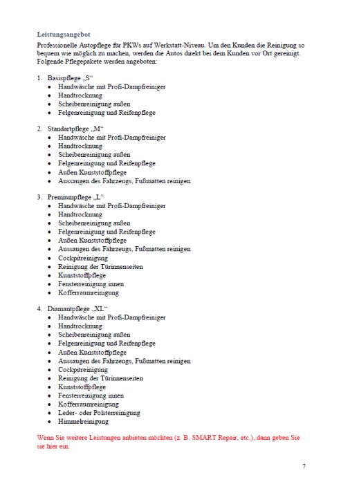 Businessplan - Autopflegeservice