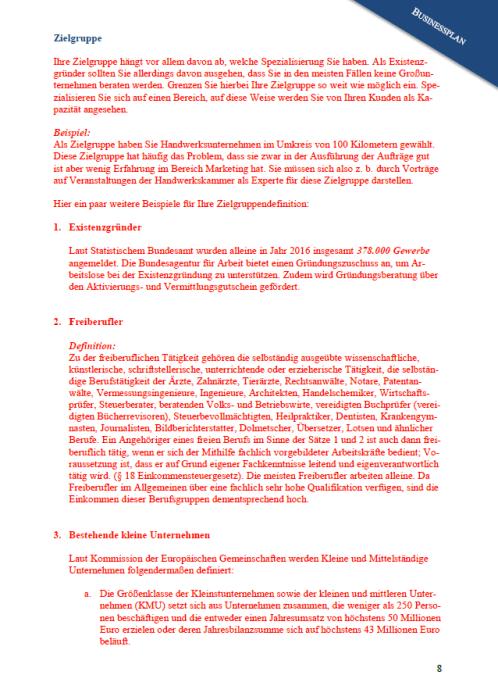 Businessplan - Marketing-Analyseunternehmen