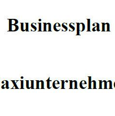 Businessplan - Taxiunternehmer