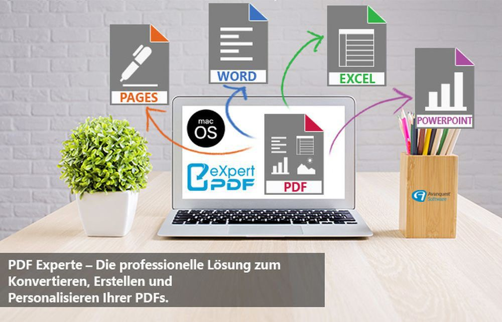 Avanquest DE - eXpert PDF 11 Home (MAC)
