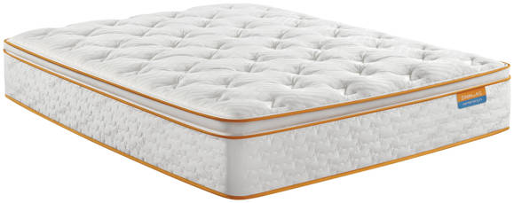 Picture of THRILLZZZ PILLOW TOP