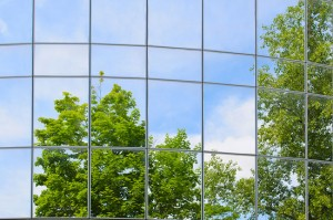 Trees reflected in a mirrored building