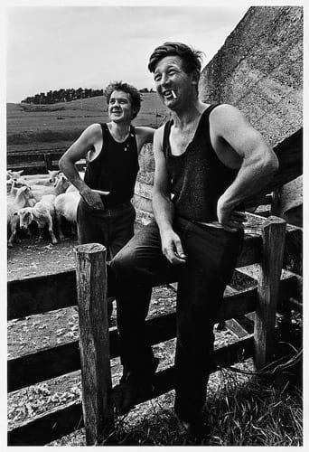 Sheep Shearers 1969