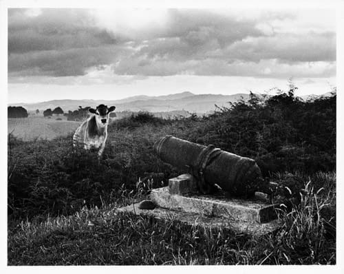 Ruapekepeka 1970