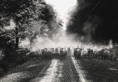 Eglinton Valley 1970