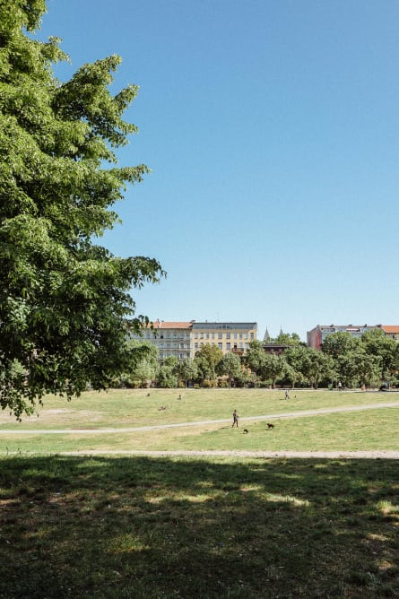View of a park in Berlin