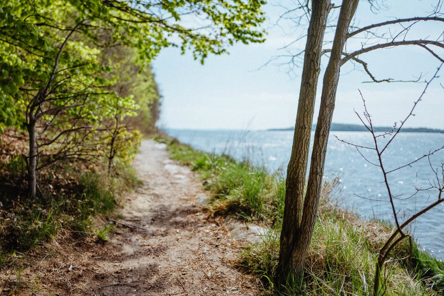 A trail next to the sea