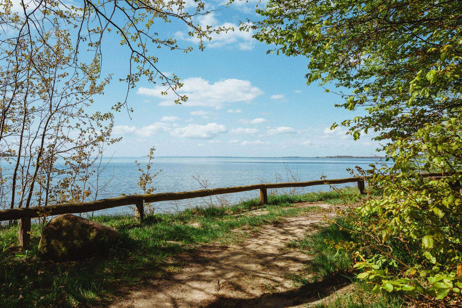 A view of a trail with a small railing and the sea in the background