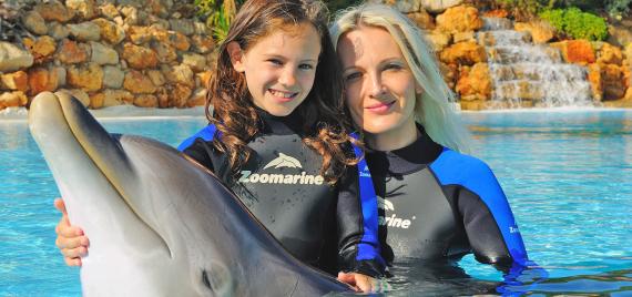 Zoomarine, Dolphin