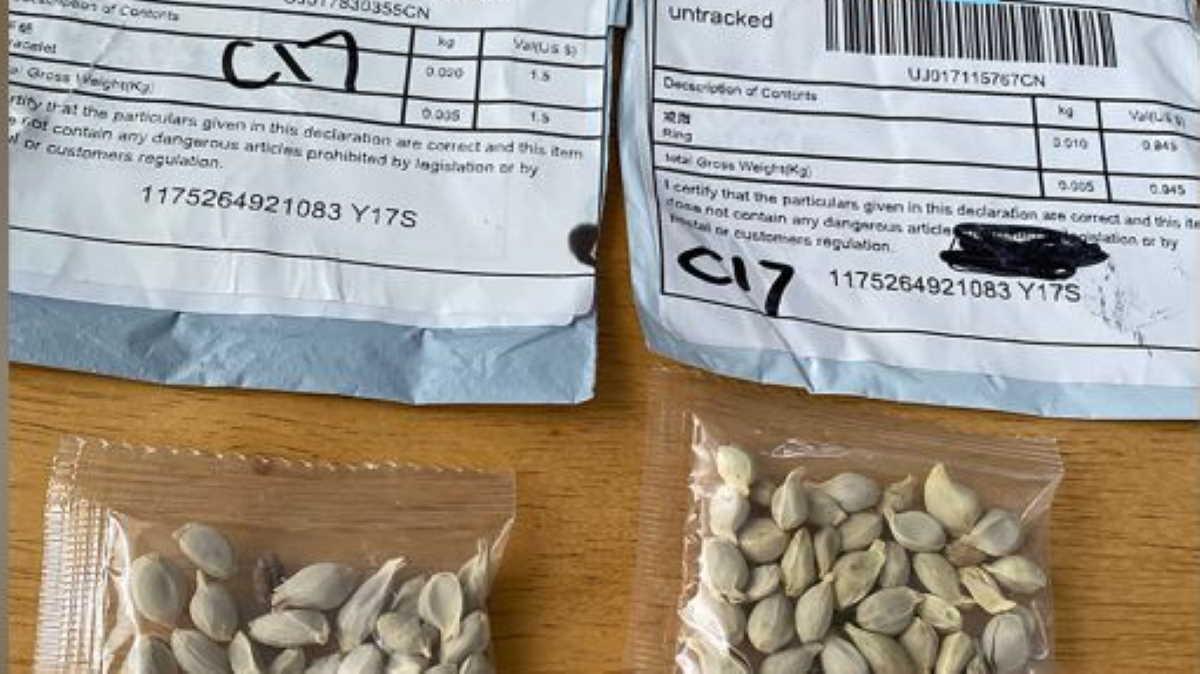 U.S. suspicious seed