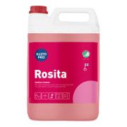 Sanitær Kiilto Pro Rosita 5l